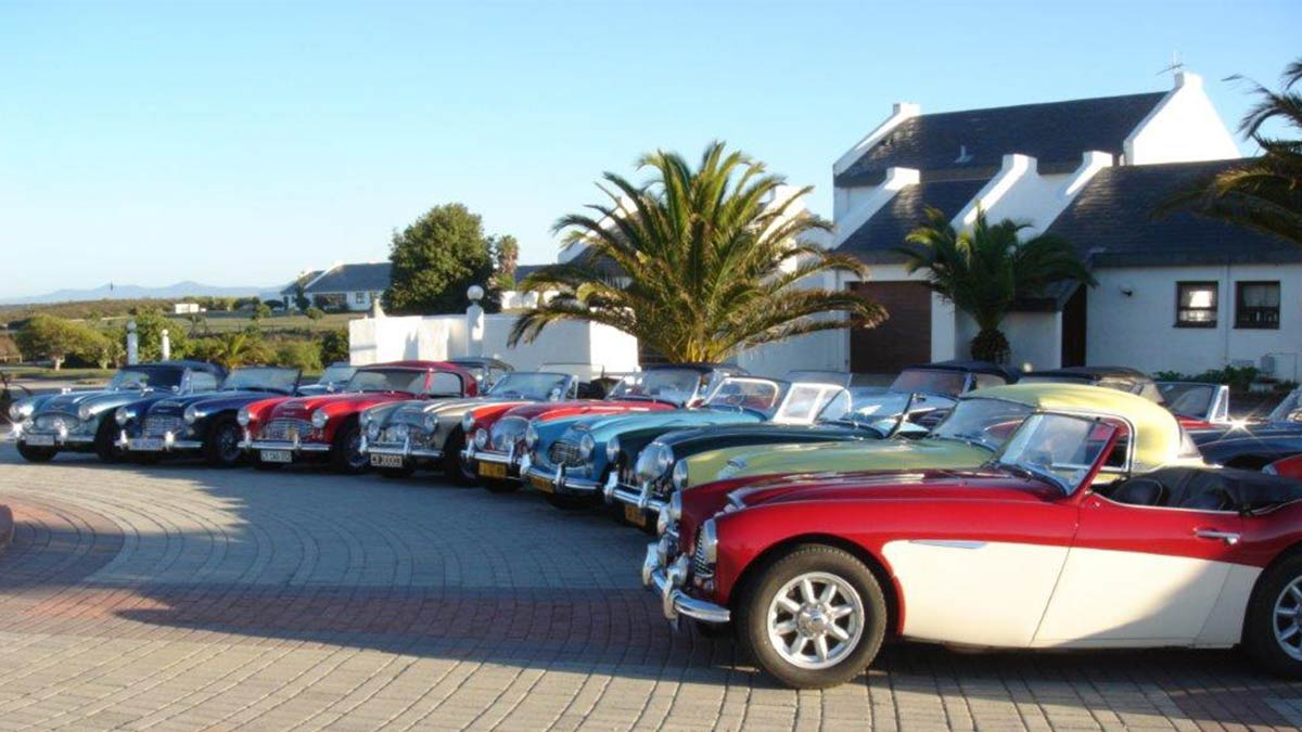 Southern Austin-Healey Club Garden Route Event