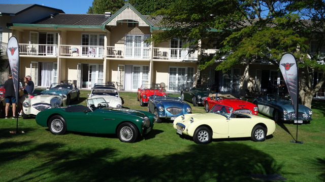 Image of Austin Healey and Sprite cars at the Volcanic Plateau event.