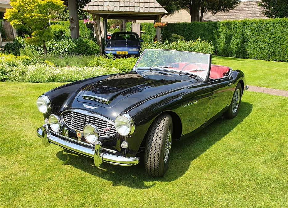 New Listing! 1959 Austin Healey 3000 MK1 BT7 | Netherlands