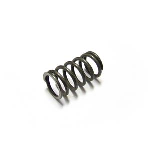 Buy VALVE SPRING-outer Online