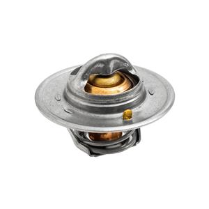 Buy THERMOSTAT(74degree C) Online